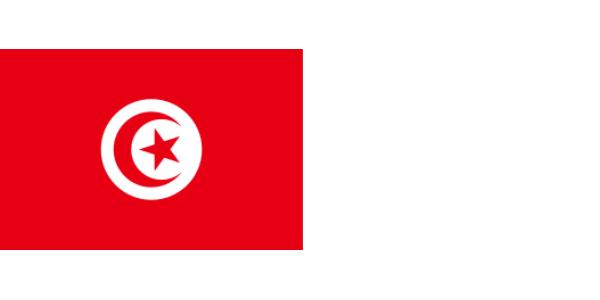 LOGO-VLAG_TUNESIA